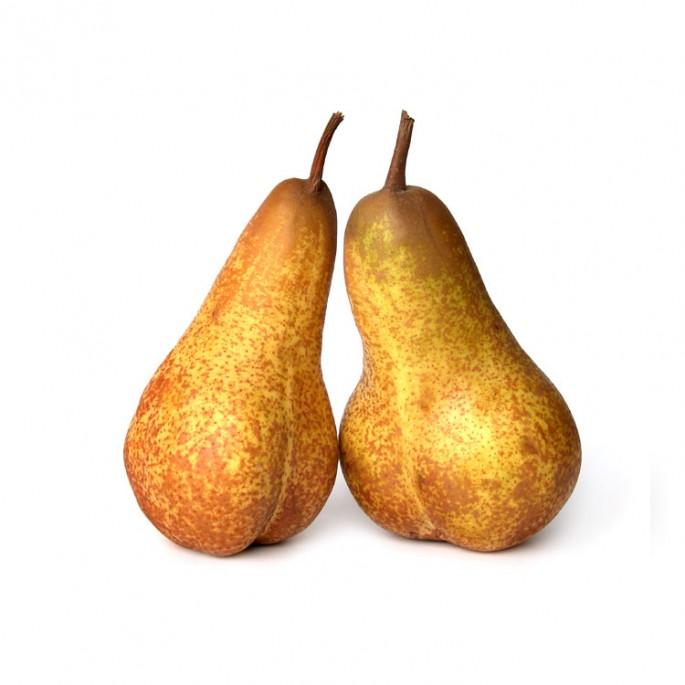 Simon Bell, </span><span><em>pears #0560</em>, </span><span>d-print, 16 x20 inches