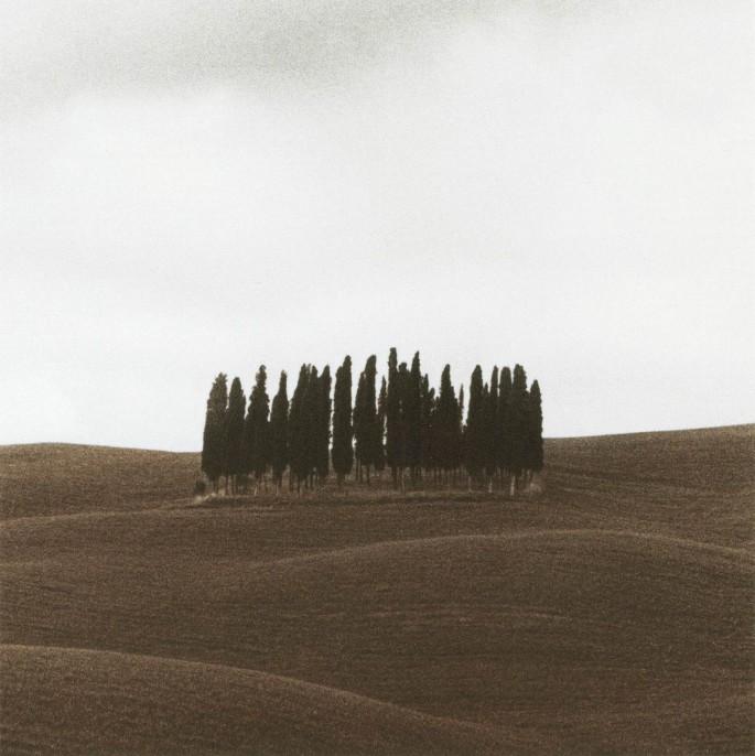 Michael Magill, </span><span><em>Tuscany, 1999</em>, </span><span>16x20