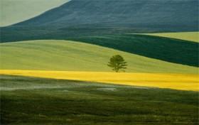 Franco Fontana, </span><span><em>Basilicata-Italy, 1978</em>, </span><span>Professional Kodak Endura, 50x70cm