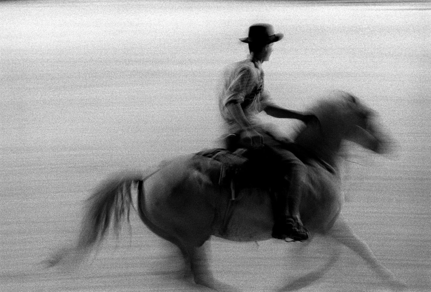 Fabrice Strippoli//KlixPix//FirstLight, </span><span><em>Camargue Horses</em>, </span><span>11x14