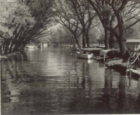 Reg Foster, </span><span><em>Lazy Lagoon, RCYC Toronto Island 1955</em>, </span><span>Black and White 8 x 10