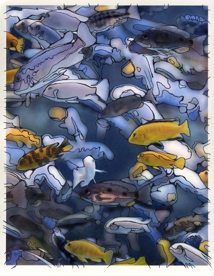 Caley Taylor, </span><span><em>Fishies, 2006</em>, </span><span>Photo Drawings,  10 x 13