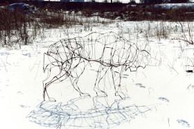 by Deborah Farquharson, Martha Johnson, </span><span><em>Gray heading Home 2003</em>, </span><span>colour photograph 11x14