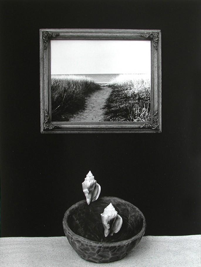 Janet Claire Dawidowicz, </span><span><em>Trajectory, 2006</em>, </span><span>gelatin silver print, 20x16