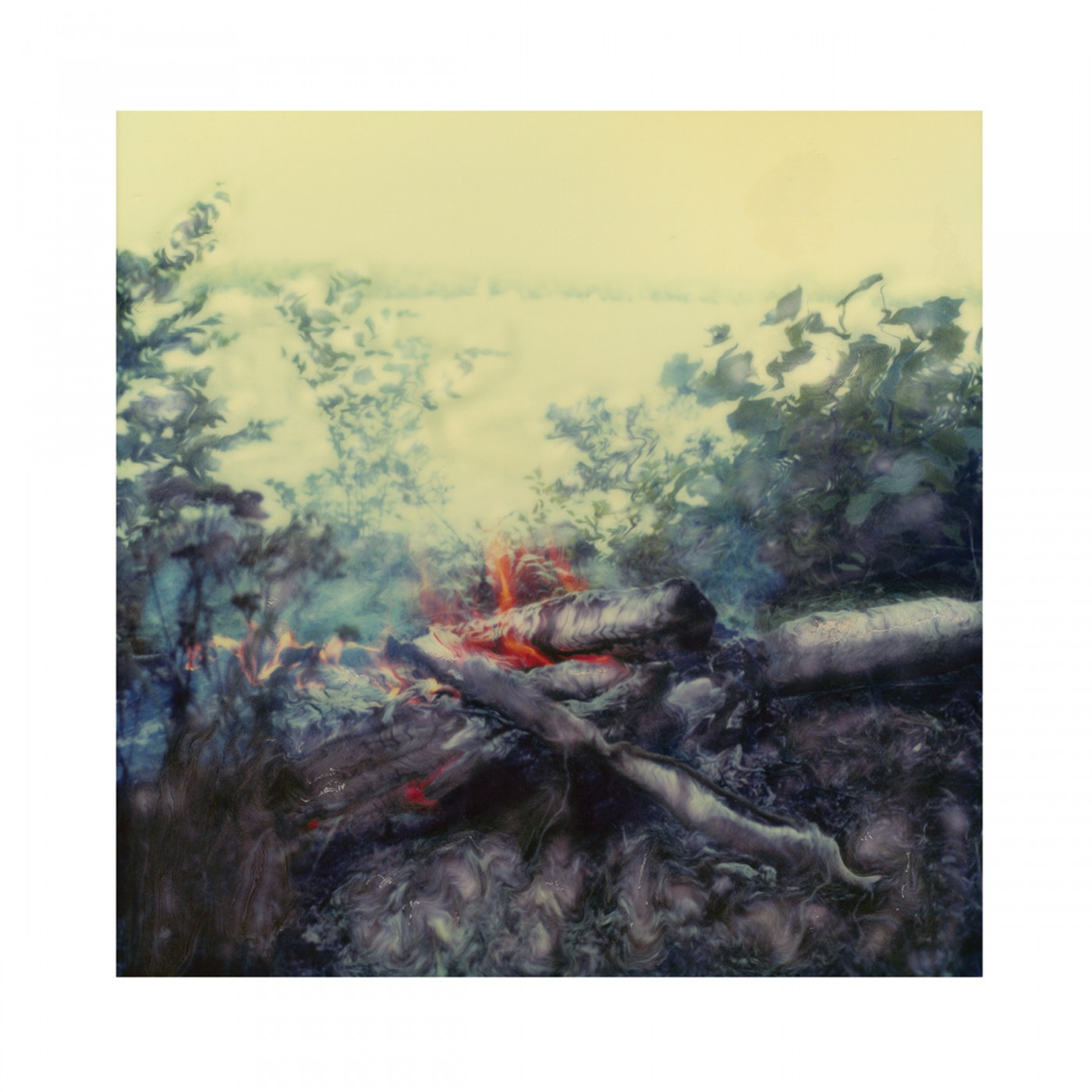 LOUISE VEZINA, </span><span><em>BRUSH FIRE &amp;amp; LAKE III, 2007</em>, </span><span>archival digital print 20x20