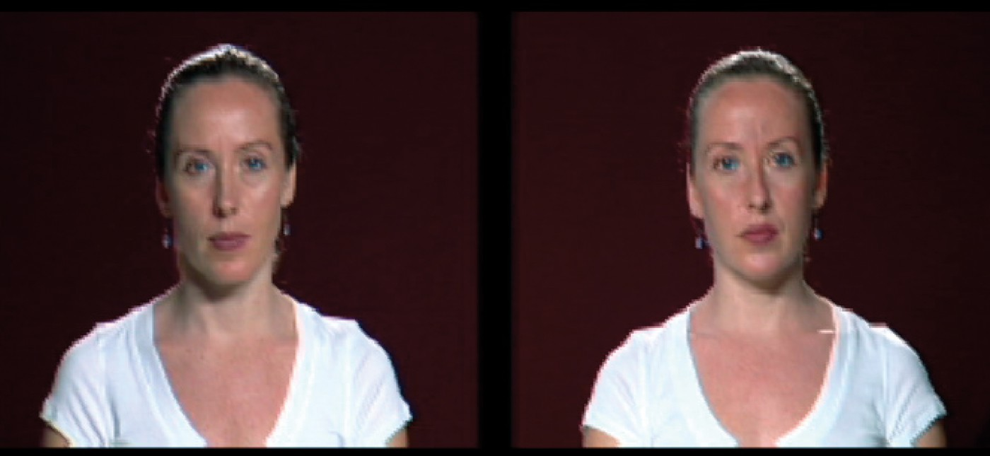 Sara Angelucci, </span><span><em>Double Take, 2007</em>, </span><span>video still, size variable