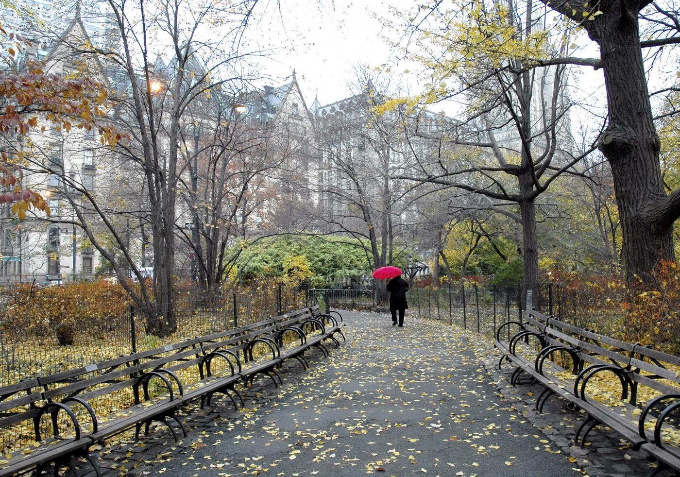 Chico, </span><span><em>A Walk in the Park</em>