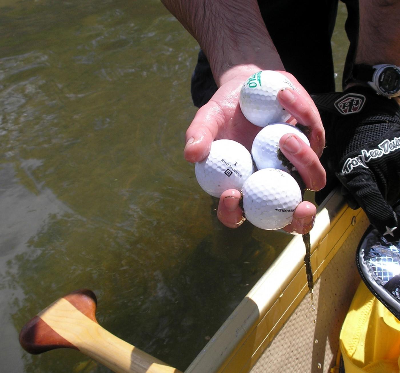 Michael Brown, </span><span><em>Fetching Golf Balls from Black Creek, 2008</em>, </span><span>Photograph