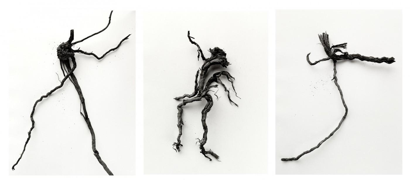 Ron Baxter Smith, </span><span><em>The Mandrake Root, 2006</em>