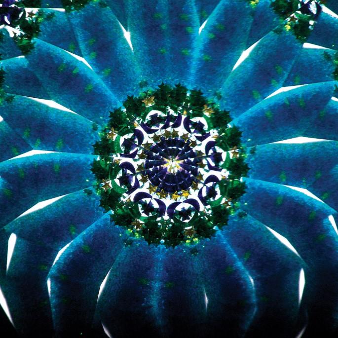 Janis Rees, </span><span><em>Ocean Flower</em>, </span><span>2010