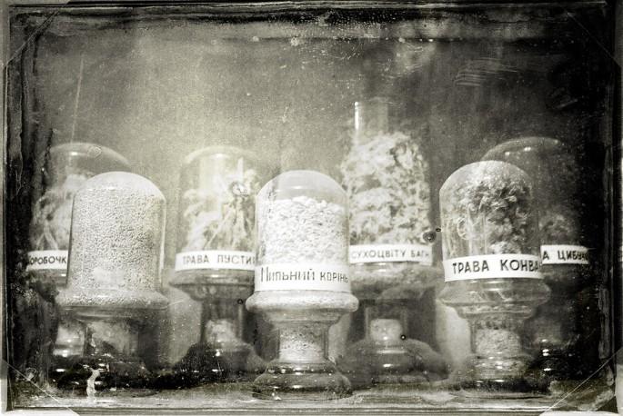 Olena Sullivan, </span><span><em>Ancient Herbs</em>, </span><span>2009