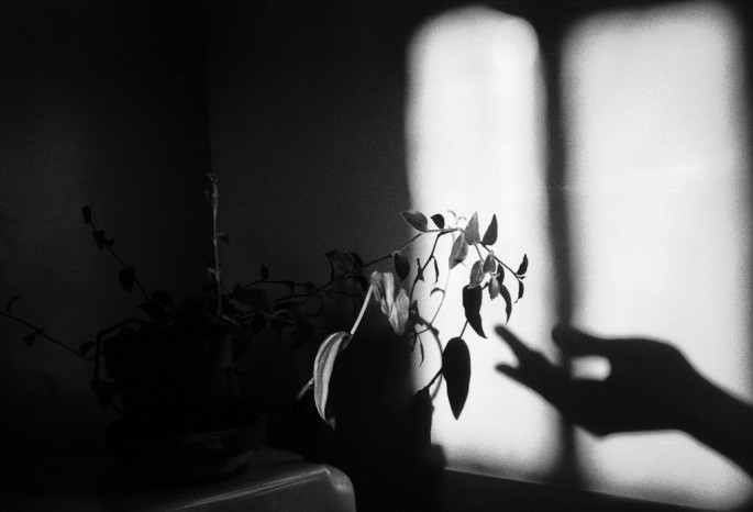Jeffrey Berman, </span><span><em>Palmerston</em>, </span><span>1984