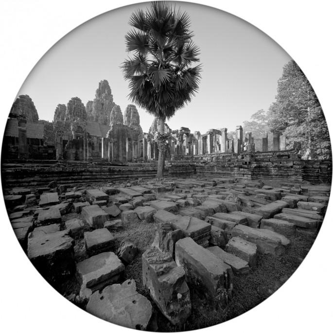 Sam Wang, </span><span><em>Palm at Bayon</em>, </span><span>2010