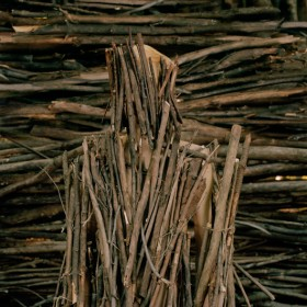 Alex Kisilevich, </span><span><em>Untitled, from the series, Kallima</em>, </span><span>2011