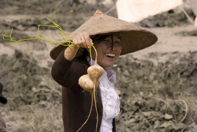 J.P. Gural, </span><span><em>Pulled by the Roots in Laos</em>, </span><span>2012