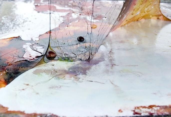 Ainsley Boyd, </span><span><em>Fossil 49</em>, </span><span>2011