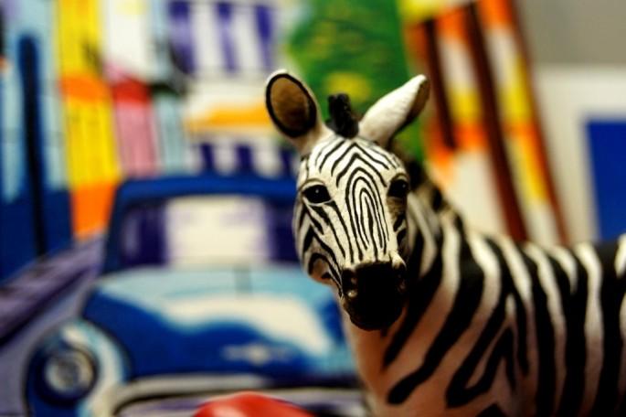 Katerina Chronopoulos, </span><span><em>Zebra in Havana</em>, </span><span>