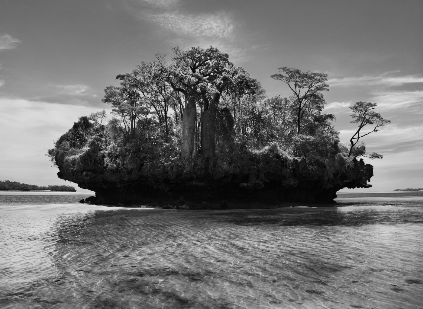 Sebastião Salgado , </span><span><em>Baobab trees. Bay of Moramba. Madagascar</em>, </span><span>2010 Courtesy of Amazonas Images