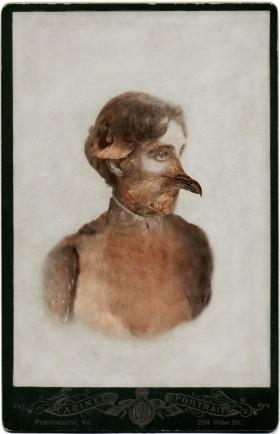 Sara Angelucci, </span><span><em>Aviary (Female Passenger Pigeon/extinct)</em>, </span><span>2013