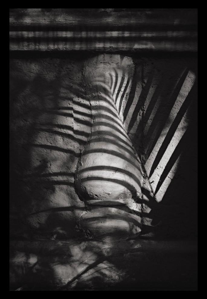 Rafael Goldchain , </span><span><em>Pilaster Palm Shadow</em>, </span><span>2010
