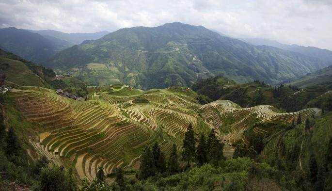 Peter Alberti, </span><span><em>Ping'An rice terraces</em>, </span><span>2008