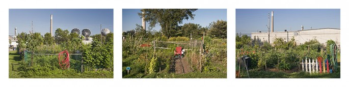 Jonathan Groeneweg, </span><span><em>The Red Series: Leslie Street Allotment Gardens</em>, </span><span>2012