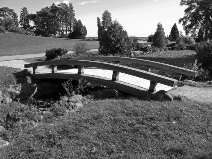 Fred Palik, </span><span><em>Bridge #1</em>, </span><span>2008