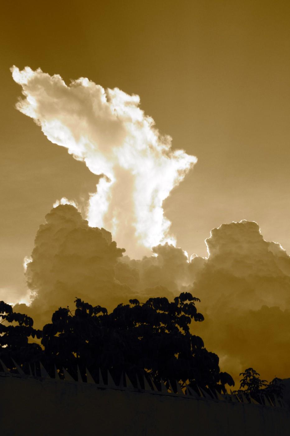 Domenick Petrungaro, </span><span><em>The Sheltering Sky</em>, </span><span>2012