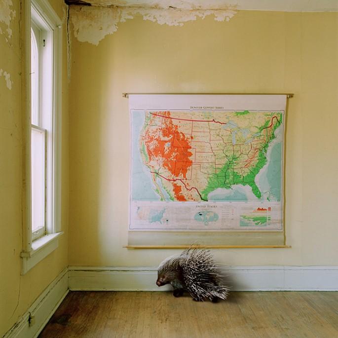Maureen O'Connor, </span><span><em>The Traveller</em>, </span><span>2013