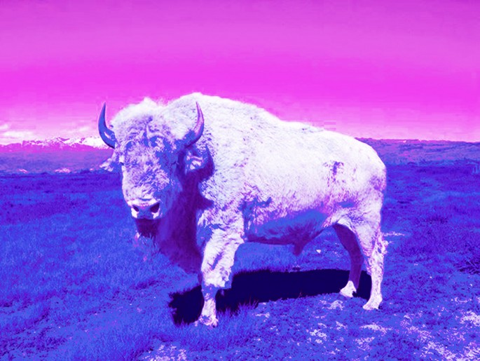 Dana Claxton, </span><span><em>Tatanka (Buffalo)</em>, </span><span>2013