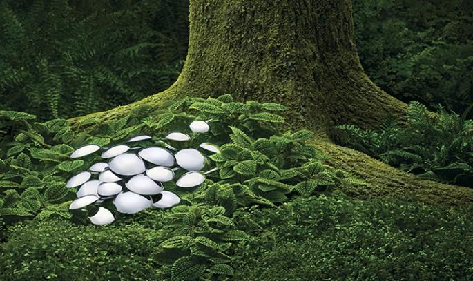 Ian Campbell, </span><span><em>Mushroom Spoons</em>, </span><span>2008