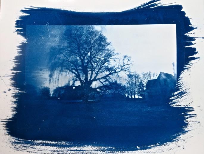 Sarika Sehgal, </span><span><em>Windswept in Galt</em>, </span><span>2014