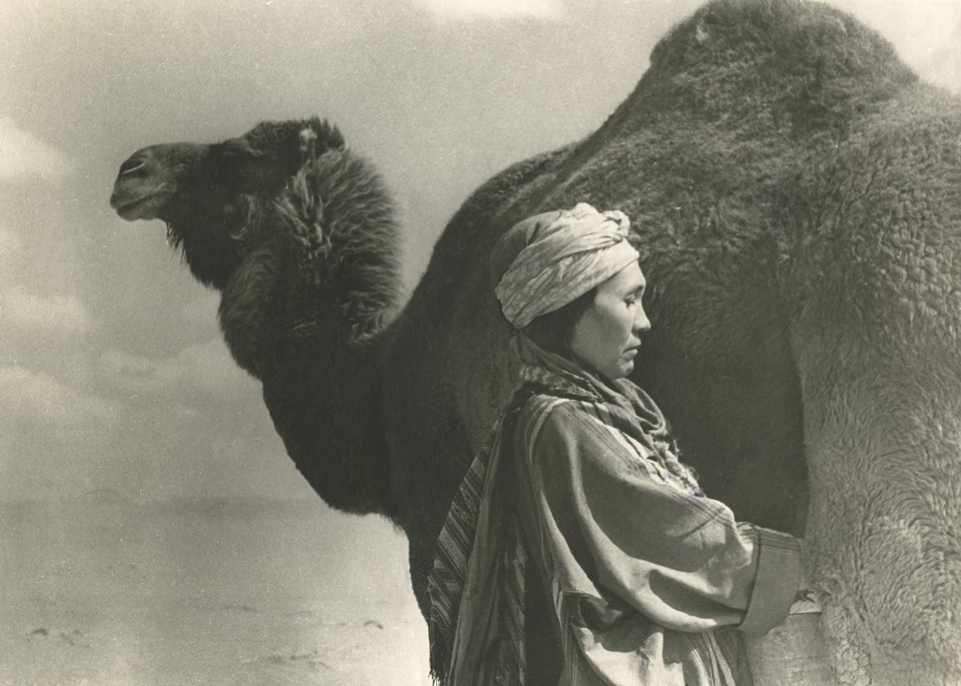 Durdy Bayramov, </span><span><em>Milking Camel</em>, </span><span>1971