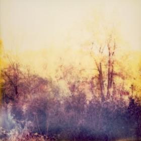 Vegar Samuelsen, </span><span><em>Untitled</em>, </span><span>2011
