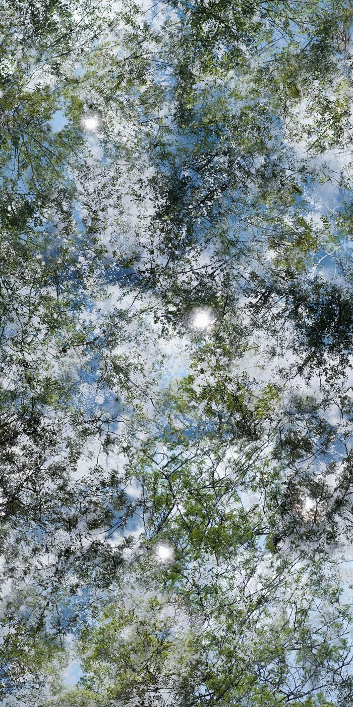 Chih-Chien Wang, </span><span><em>Sunny Afternoon 2014 #101_06_L</em>, </span><span>2014  Image courtesy of Pierre-François Ouellette art contemporain
