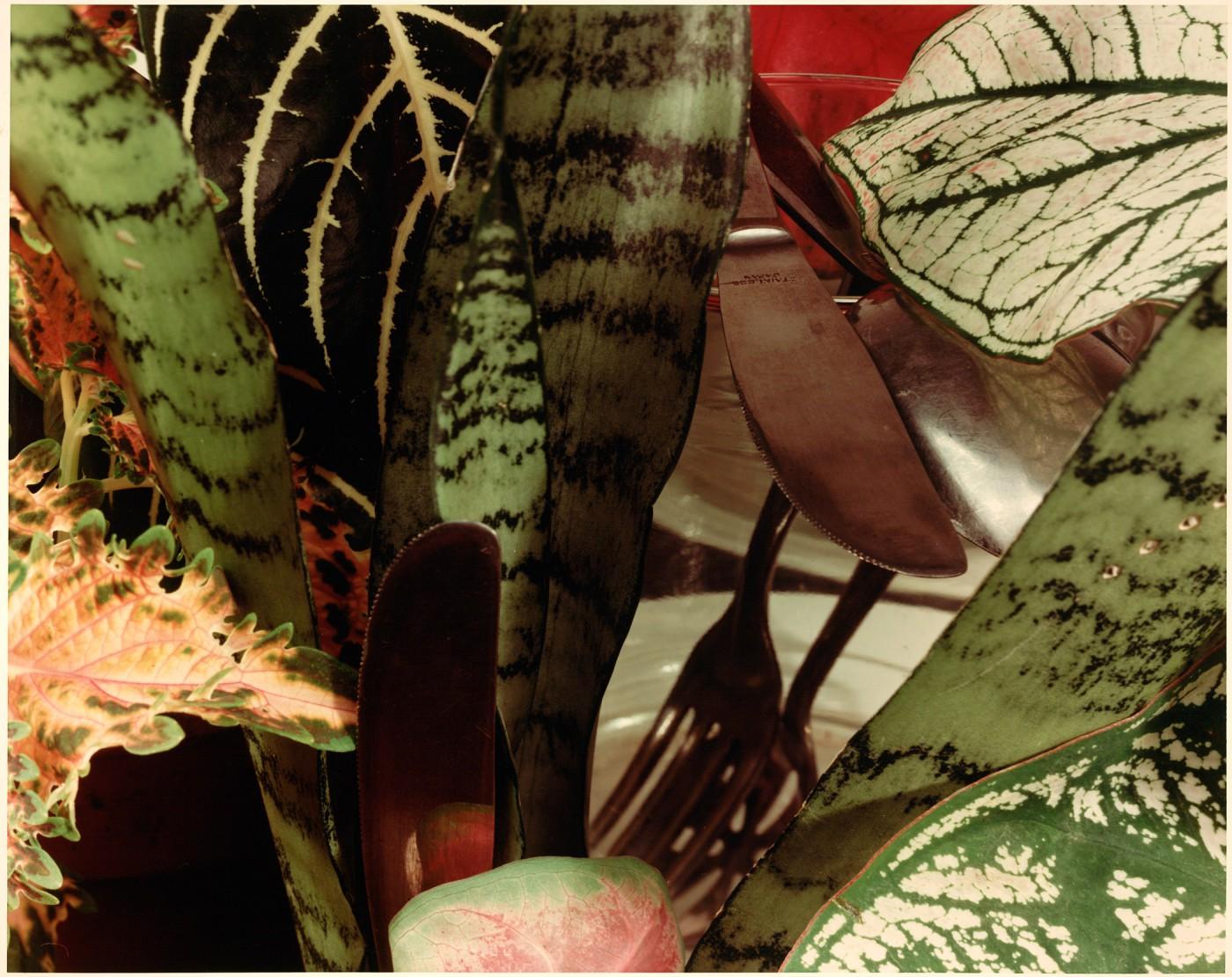 Jan Groover, </span><span><em>Untitled (Cookware Set)</em>, </span><span>1978 Courtesy of Janet Borden, Inc., New York