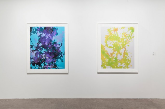Installation view of, </span><span><em>Part Picture</em>, </span><span> (James Welling). Photo: Toni Hafkenscheid