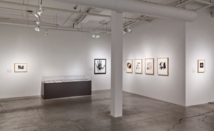 Installation view of , </span><span><em>Past Picture: Photography and the Chemistry of Intention</em>, </span><span>