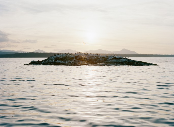 "Elise Rasmussen, </span><span><em>Glass Island</em>, </span><span>2014, Chromogenic Print, 48""x63"", Courtesy of the artist and ESP"