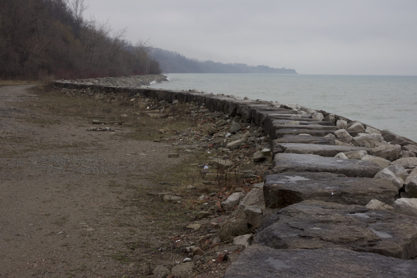 Jennifer Falvy, </span><span><em>East Guildwood Curve, Lake Ontario Shoreline</em>, </span><span>2016