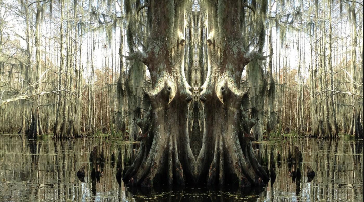 Karen Silver, </span><span><em>Swamp</em>, </span><span>2013