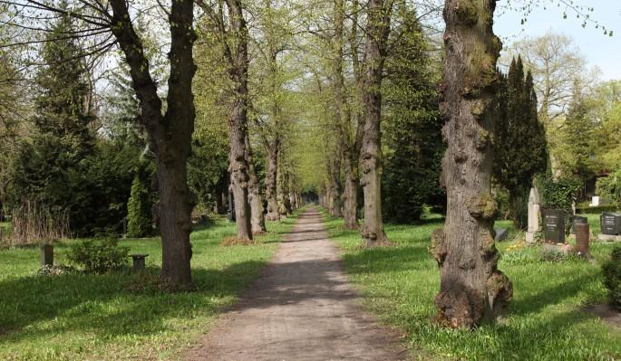 Dan Hudson, </span><span><em>Cemetery Path (4 seasons)</em>, </span><span>2016, Looping HD video, 22x34&quot;.