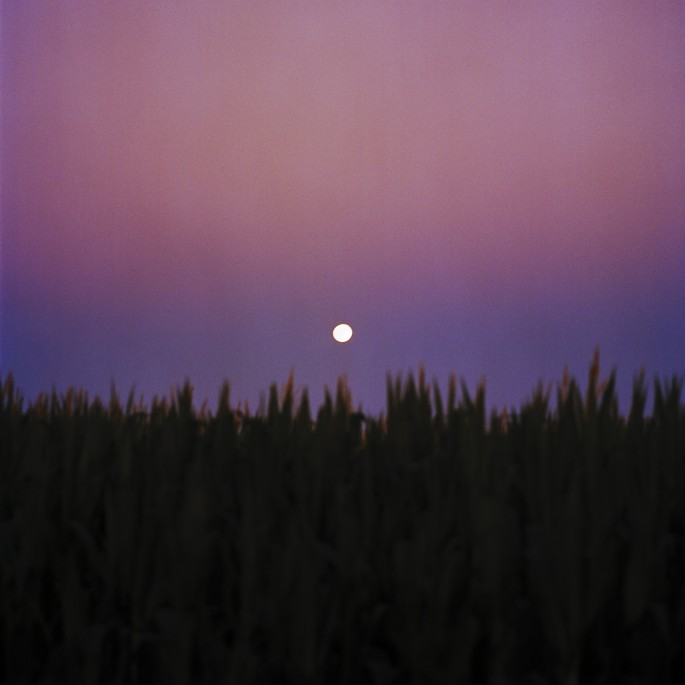 Andrew Blake McGill, </span><span><em>Moonrise</em>, </span><span>2016. Inkjet print on vinyl, 110x110&quot;.